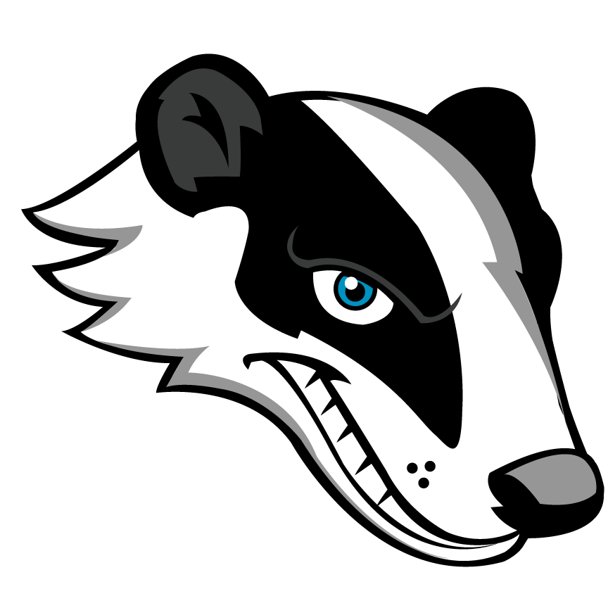 Chat Badger Social Media Management System